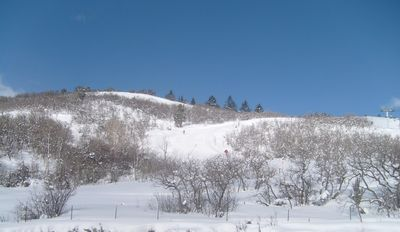 Photo for HYATT CENTRIC-PARK CITY- Directly on Mountain Ski In/Out