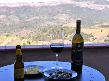 Buil and Gine Winery, Gratallops, Spain