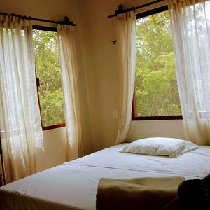 Photo for Apartment surrounded by lush vegetation in great area, best spots in Tulum