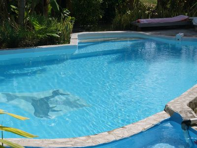 Photo for pineapple bungalow with pool