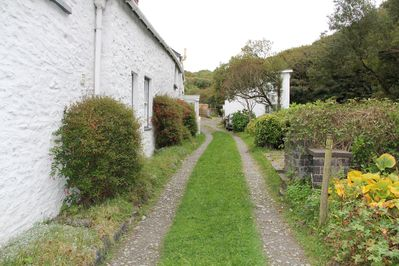 Lane leading to house