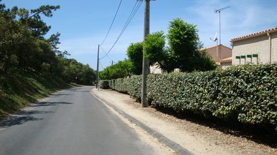 Photo for House 3 rooms Domino St Georges- 17 OLERON ISLAND