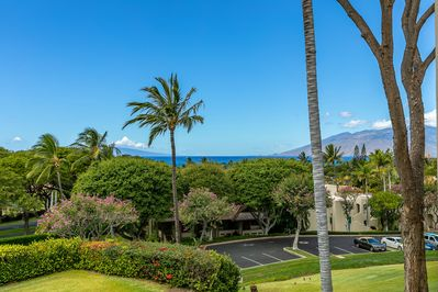 Brilliant blues and green view from the Great Room and eating lanai.