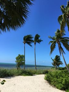 Photo for Tranquility by the Beach C129: 2  BR, 2  BA Condominium in Key West, Sleeps 6