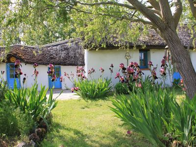 "Photo for Charming little ""Bourrine"" Vendéenne for 4 people 1.5 km from the beach"