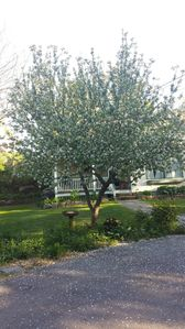 Photo for Location, Location, Location, IN THE HEART OF OGUNQUIT