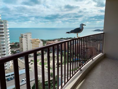 Photo for Panoramic Apartment in Portimao: Ocean view, WiFi