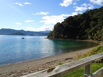 Whatamango Bay, Marlborough, New Zealand
