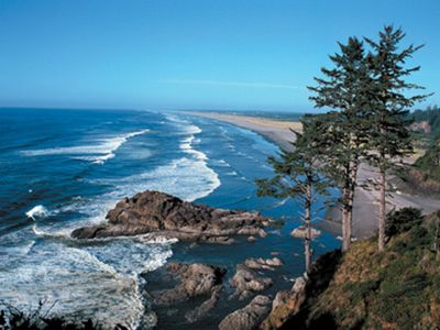 Photo for Visit the beautiful Leadbetter Point State Park & Wildlife Refuge!
