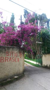 Photo for Site Brasilia Facebook. com / sitiobrasilia Whatsapp (15) 99613-8989 Mirian