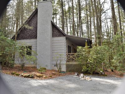 Photo for Secluded-Log Cabin-in town Cashiers-Pet Friendly