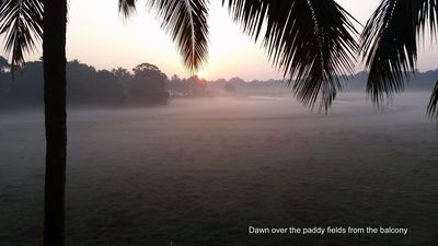 Dawn over the paddy fields from the balcony