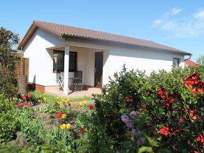 Photo for Charming Bungalow in Dranske near Baltic Sea