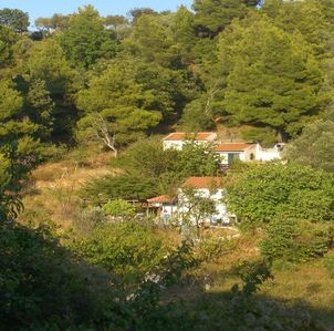 Photo for Holiday home lonely and quiet surrounded by green island nature only 5km from the main town