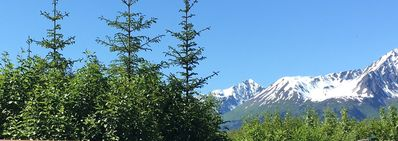 Photo for Amazing views on a quiet street just outside of Seward, AK