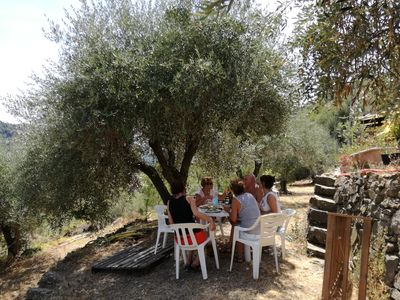 Photo for Back to nature, comfort lodging in an olive grove - a truly unique place to stay