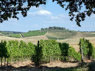 Photo for Apartment Podere Cignanrosso  in Castellina in Chianti, Siena and surroundings - 6 persons, 1 bedroom