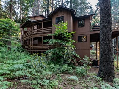 Photo for Beautifully Remodeled Cabin just outside Yosemite