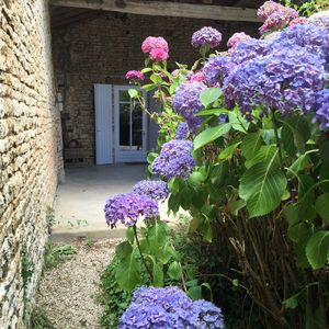 Photo for Stone house in a calm hamlet in the Poitou-Charentes region
