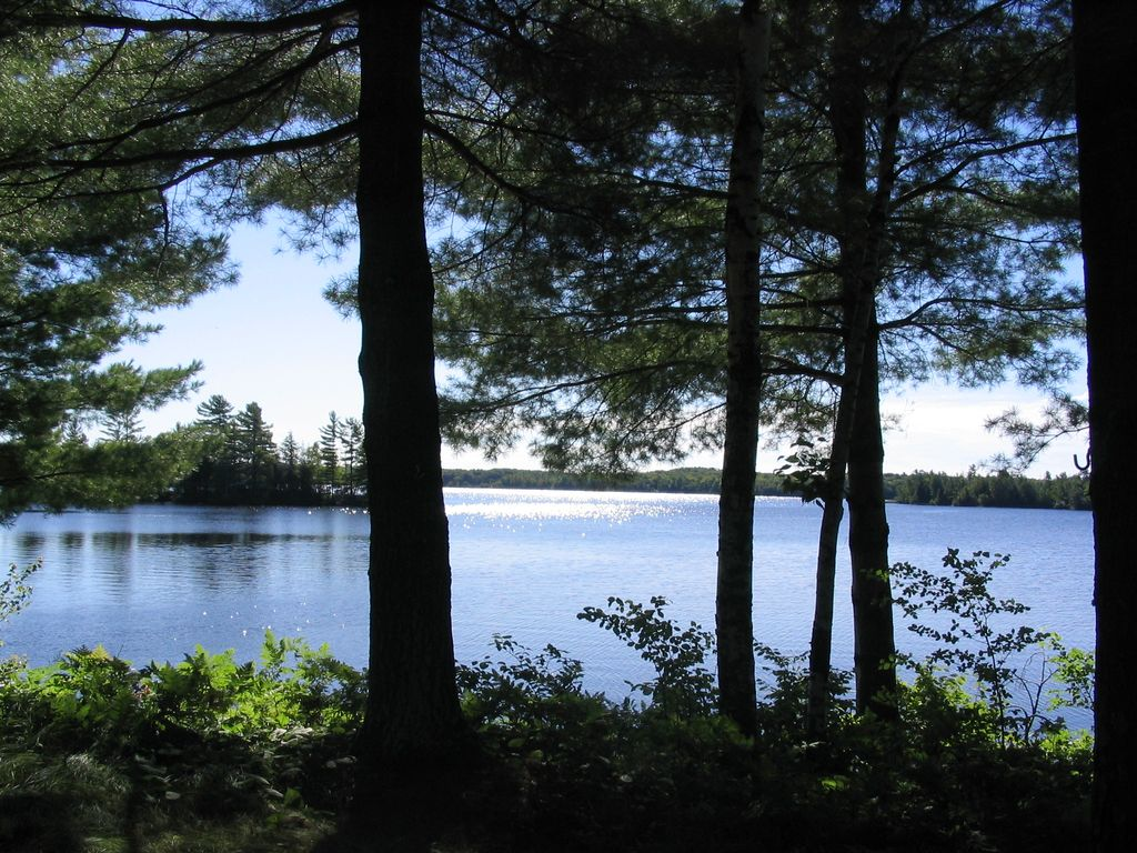 The otter cabin on moose moose lake wi vrbo for Cabins on lake michigan in wisconsin
