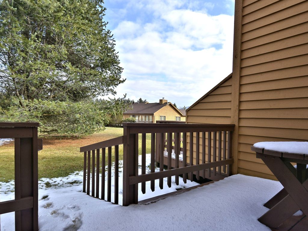 The Young Bears,perfect for a romantic getaway in the heart of Canaan Valley!