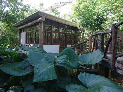Photo for Casita Milagros - A Jungle Tree House