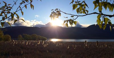 Photo for In the heart of the Shuswap • 5 Star Rating • Walking distant to amenities!