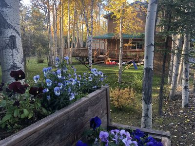 Photo for Private 3 Bedroom Home Near Denali National Park - Sleeps 10