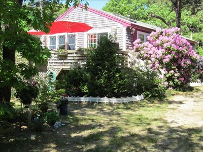Photo for Walk to Beach- 1/2 Acre Wooded Retreat.