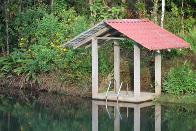1-acre naturally refreshed swimming pond.