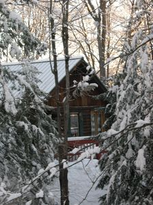 Photo for Cozy Log Cabin in the Woods
