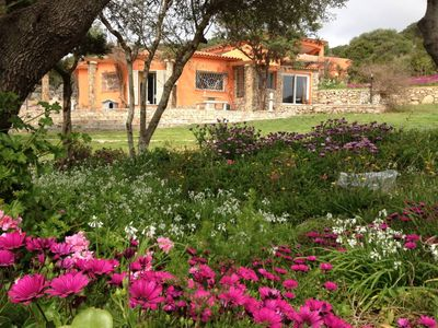Photo for Santa Teresa Gallura: House with garden