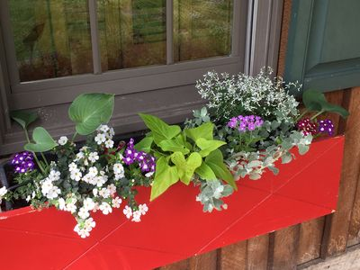 window boxes on porch with summer blooms