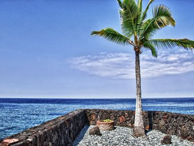 Photo for Absolute oceanfront best view for 12 people Spa, AC/WiFi 5 minutes walk to beach