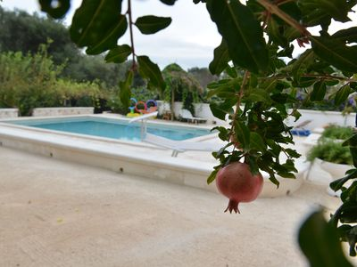 Photo for Borgo della Mimosa With Pool