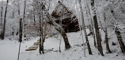 Photo for Unforgettable Dreams Beech Mountain Cabin