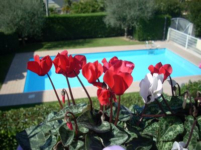 Photo for Charming apartment with swimming pool in Lazise by Garda Lake  for  holidays in relax.......