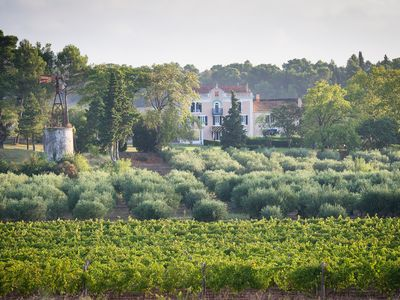 Photo for Château Canet - Holidays on a beautiful vineyard near Carcassonne