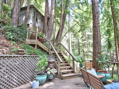 Photo for Littlehouse in the Redwoods