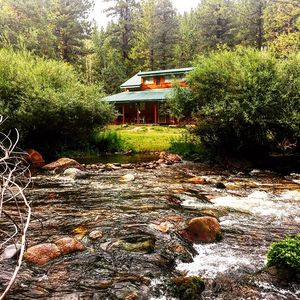 Photo for Rustic Cabin right on the Creek- Kids love it