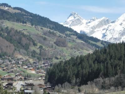 Photo for chalet - Le Grand Bornand