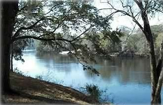 The Suwannee River, north Florida  View is from the back yard