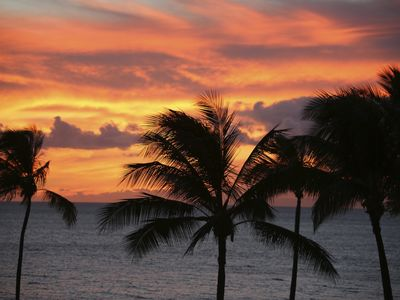 Photo for July 4th  in Maui: Guaranteed OceanFront Villa