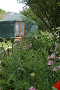 Photo for Bed and breakfast in yurt 2