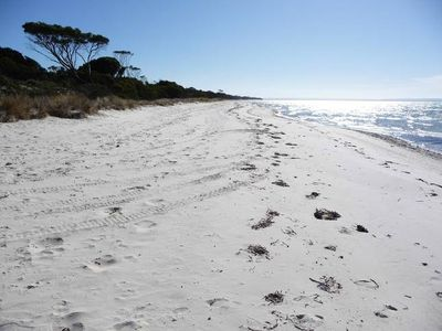 Photo for Secluded beach, native bush--Clearwater Haven