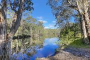 Noosa, absolute river front bush and fishing kyaks