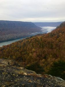 Photo for Tennessee's Grand Canyon! 10 Min From Downtown Chattanooga!