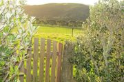 Caravan in the orchard with a view.