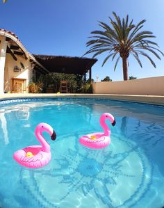 Photo for CASA SOLANDRA, 6 people, private pool
