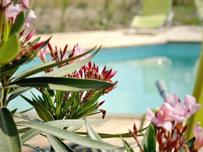 Photo for 8-room group accommodation for 20 people with swimming pools surrounded by nature